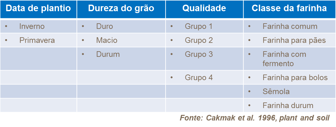 Classificações do trigo